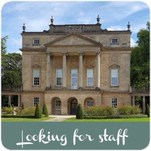 looking-for-staff-link